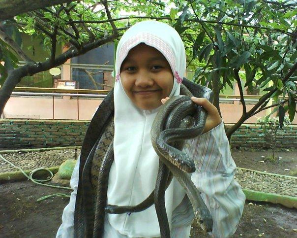 Jadi Medusa di Taman Reptil Purbalingga.