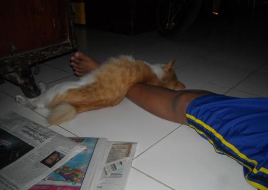 ruben tidur di atas kakinya adekku