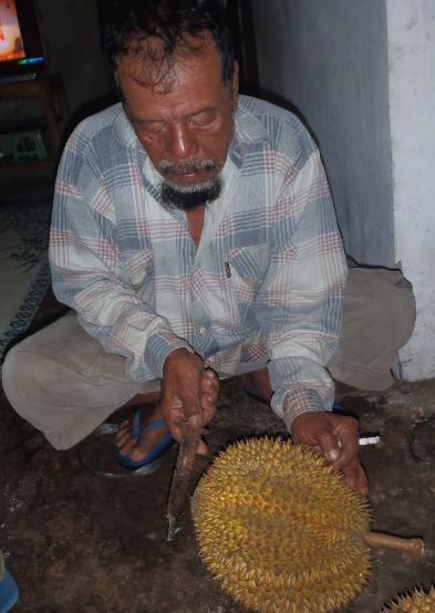 Bagian perut buah ditepuk pakai pisau.