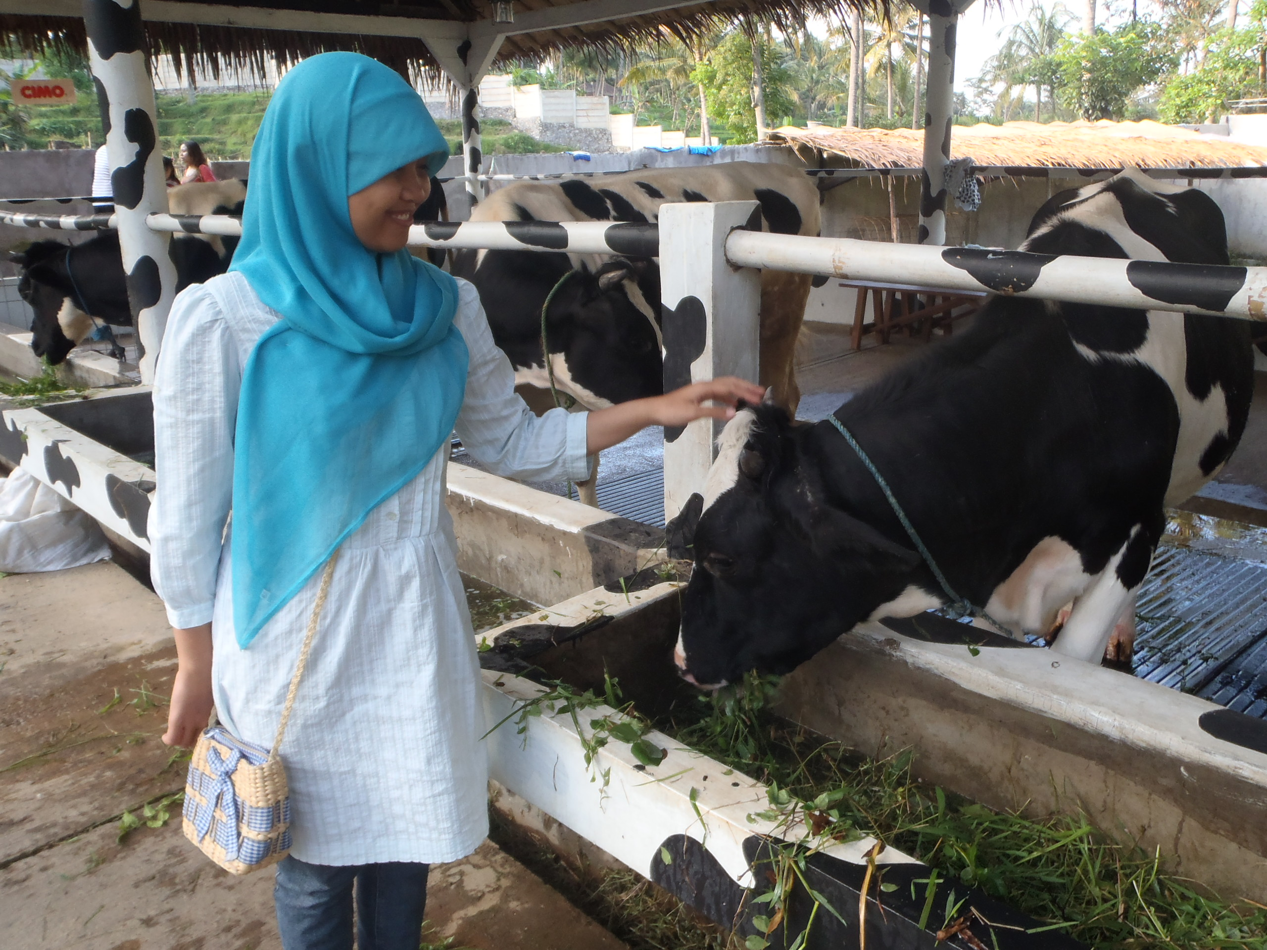 Jalan-jalan : Cimory Resto and Milk Factory – ninnameong